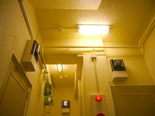 改修後階段部の照明